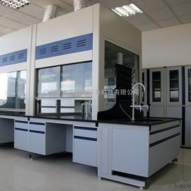 广州禄米专业生产 全钢桌上型通风柜-设计 生产 安装 售后