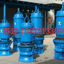 大型潜水轴流泵型号及价格