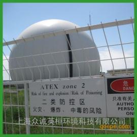英环沼气双膜气柜 沼气储气柜 DMG1000m3