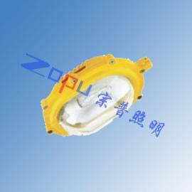 TGF753-j70W挂壁式防爆泛光灯