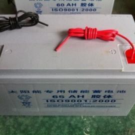 太阳能专用胶体蓄电池 12V65AH太阳能电瓶