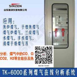 干熄焦混合气体在线分析系统 CO H2 O2分析仪