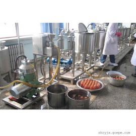 2018小型果汁饮料生产线设备