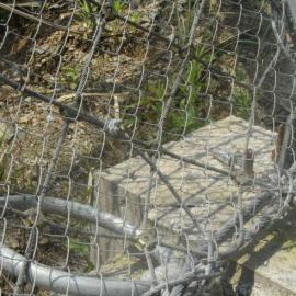 淮北边坡主动防护网实体生产厂 被动防护网-山体滑坡绿化护网