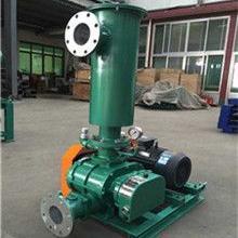 负压三叶罗茨鼓风机真空泵圣澄厂家专业高品质真空泵