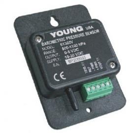 美国R M Young 61302大气压力传感器