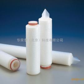 密理博0.2um双层PES聚醚砜液体滤芯5寸10寸20寸