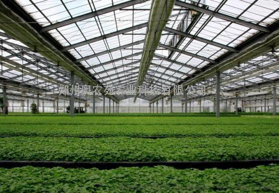 武汉连栋智能阳光板温室大棚工程规划设计施工