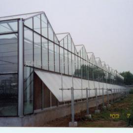 河南哪有建连栋温室大棚工程的公司