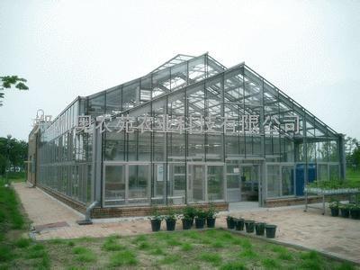 西安连栋玻璃温室大棚工程规划设计施工