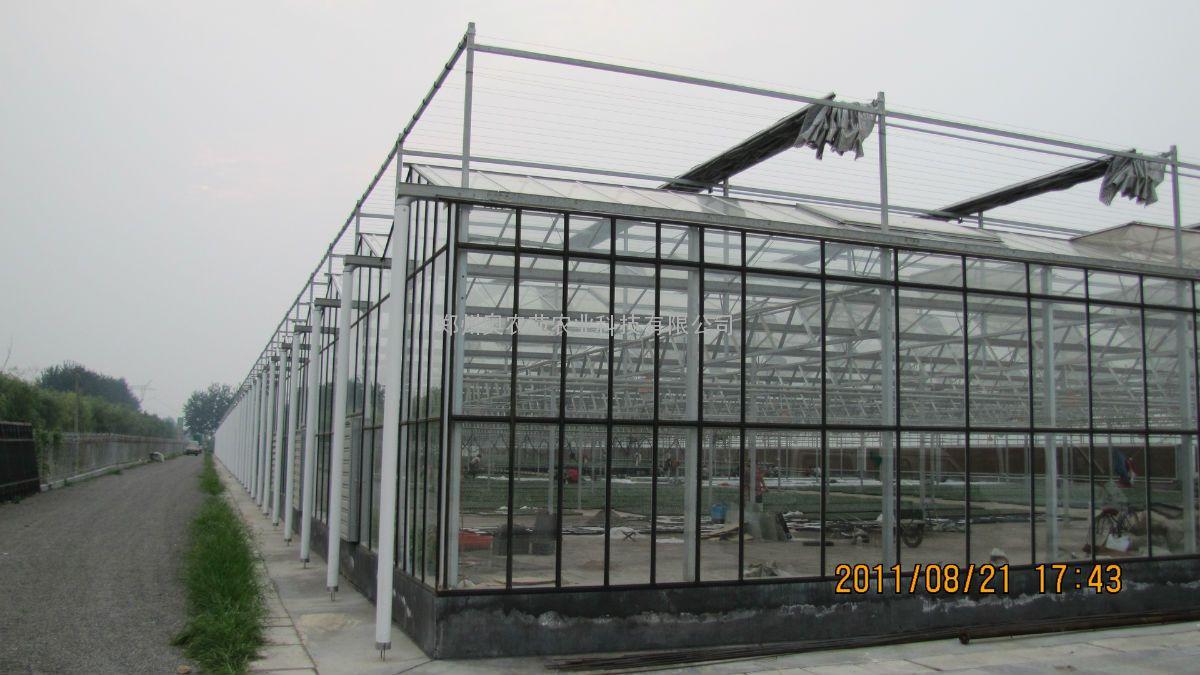 山东潍坊黑龙江智能玻璃大棚温室8米跨度、6米顶... - 中国供应商