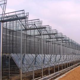 山西连栋温室大棚工程设计施工