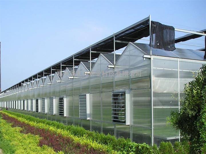 优质采光板温室大棚