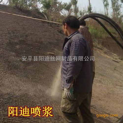 水泥挂网喷浆 公路边坡绿化 隧道喷浆施工
