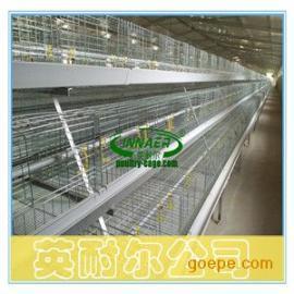蛋鸡笼生产厂家 三层蛋鸡笼 五门蛋鸡笼