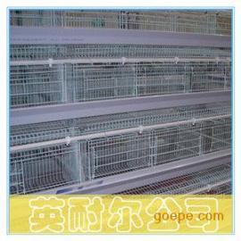 三层三门阶梯式肉鸡笼|英耐尔1.88米镀锌肉鸡笼