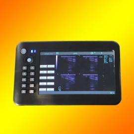 动物用的便携式B超测孕仪