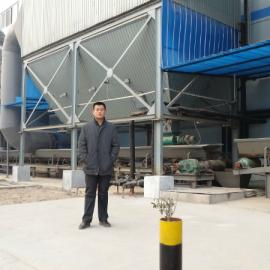供应除尘复合肥专用布袋除尘器 过滤达标复合肥厂除尘设备
