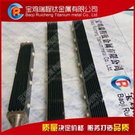 厂家直销水处理用钛标准电池 次氯酸钠发作器用钛标准电池组