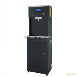 峰源牌WY-2G-A商用RO直饮机温热直饮开水机