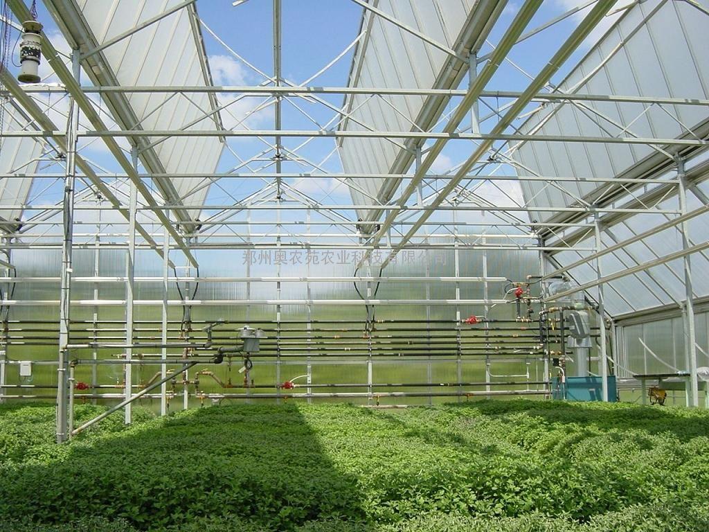 温室自动开窗温室顶部天窗