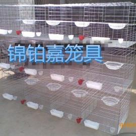 广东鸽笼、12位鸽笼、鸽笼厂、