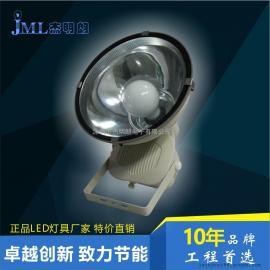 厂家特价直销 高频无极灯投光灯 30W~200W 质保五年