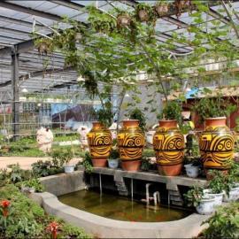 供甘肃园林绿化和兰州农业生态园
