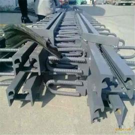 海桥橡胶专业供应Z40-60-80桥梁伸缩缝