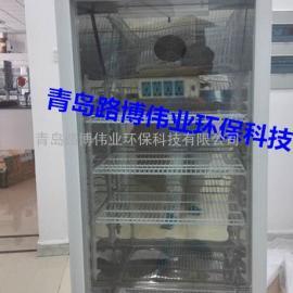 BOD5测定仪 BOD培养箱厂家 恒温恒湿箱价格 培养箱