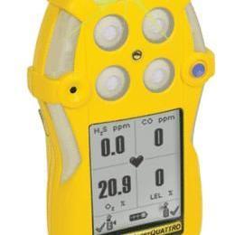 供应加拿大BW QT-4扩散式四合一气体检测仪