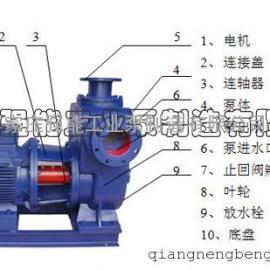 便拆式离心泵350S125A,强能工业泵 铸铁双吸泵价格