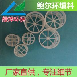 塑料鲍尔环填料 鲍尔环填料 规格齐全 通量大 阻力小