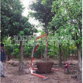 创宇便携式挖树机、配套起树机器1.3T 起吊土球