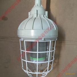 HRD81-68g防腐防爆节能灯配E27灯座