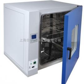 干燥箱 高温干燥箱 工业烘箱 实验室烘箱DHG-9023A