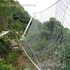 RX-050菱形被动防护网