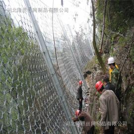 RXI-100环形被动防护网