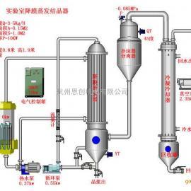 单效降膜蒸发器、实验室单效降膜蒸发器、小型降膜蒸发器