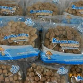 (图)厦门BOPP食用菌包装膜原膜厂家在这-全国送货防雾膜
