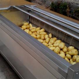 毛辊清洗机,土豆清洗机,自动洗果机