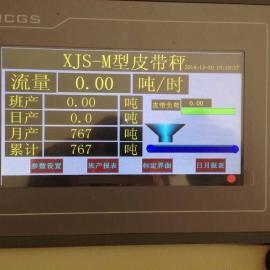 贵州电子皮带秤