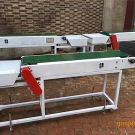 小型带式输送机绿色皮带机