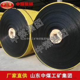尼龙芯输送带,尼龙芯输送带型号规格,尼龙芯输送带促销中