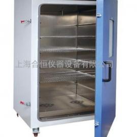 电热培养箱 微生物恒温培养箱 DHP-9602