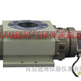 天然气流量计 XBO系列气体腰轮流量计