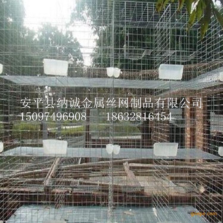 平纳诚专业销售养鸽子笼子 带全套配件自动食盒鸽笼价格图片