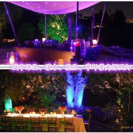 户外防水草坪�簦�庭院草坪激光�簦�林园小区景观��