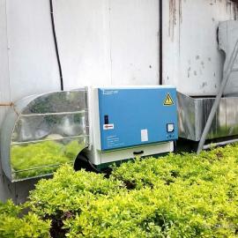 南宁天朗环保低空油烟净化设备广西酒店油烟净化设备厂家