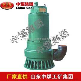 BQS25-15/3kw防爆潜水泵,防爆潜水泵供应商